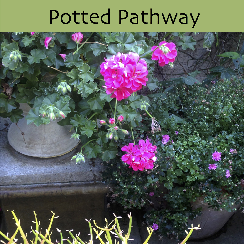 Potted Pathway